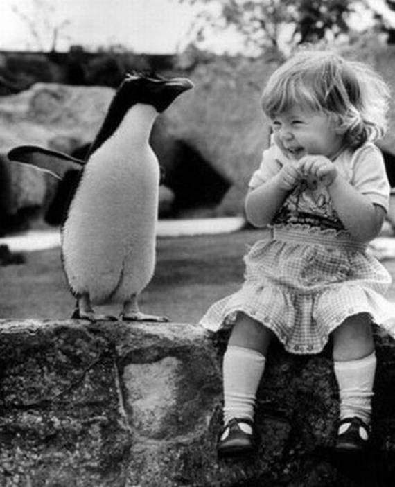 funny-cute-girl-giggling-with-penguin-01